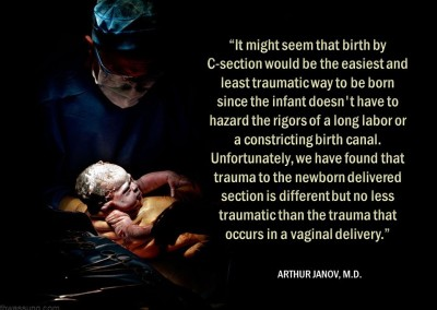 #2 The Birth Process and Structural Shifts