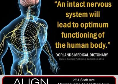 New Neural Communication !!!